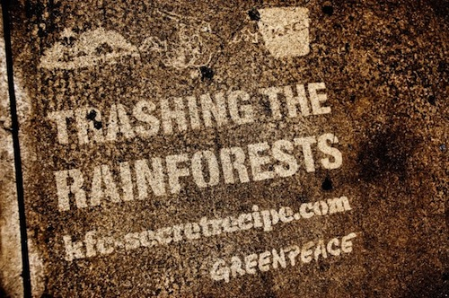 8-Greenpeace